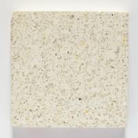 Готовая мозаичная плитка Рунит Терраццо №1